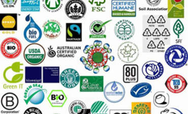 Are There Too Many Eco-Labels and Green Ratings? featured image