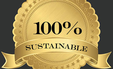 A gold standard for truly sustainable enterprises featured image
