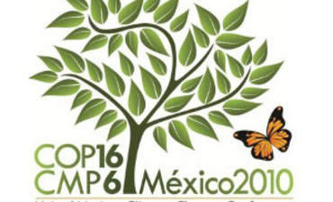 COP16: A Stepping-Stone to Real Climate Action featured image