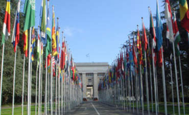 How Countries are Taking Early Action on Climate Before COP16 featured image