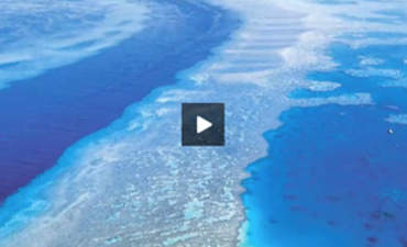 Countering Climate Change, from the Heartland to the Great Barrier Reef featured image
