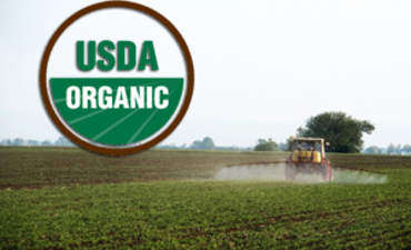 Organic Farming and the Rise of 'Green Pesticides' featured image