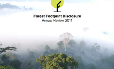More Companies Get on Board with Disclosing their Forest Footprints featured image