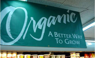 Why organic food isn't as green as you think featured image