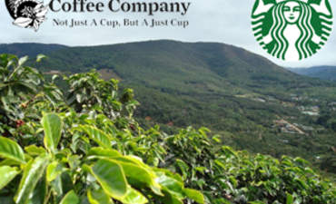 Brewing a greener cuppa joe at Starbucks and Thanksgiving Coffee featured image
