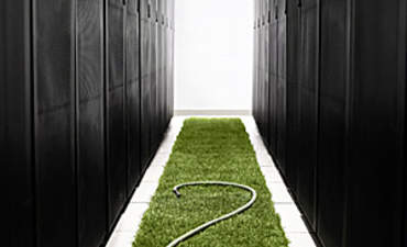 Harnessing the Power of IT to Drive Sustainability featured image