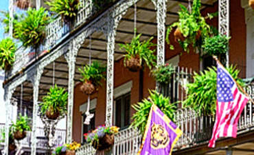 The Greener Side of New Orleans featured image