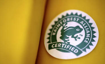 Rainforest Alliance Banana