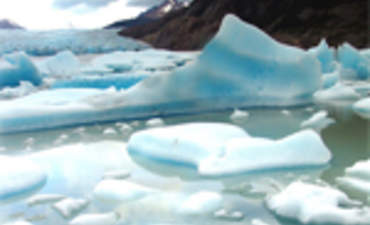 Adapting to Climate Change: A New Frontier for Business featured image
