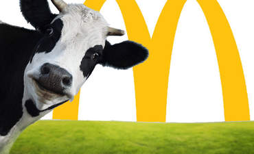 Exclusive: Inside McDonald's quest for sustainable beef featured image