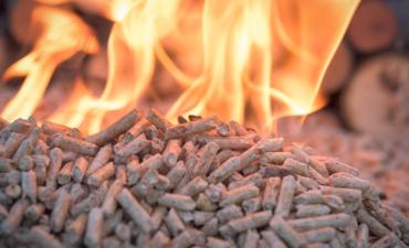 pellets for burning biomass