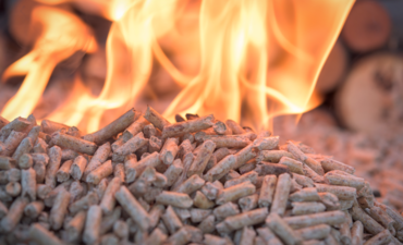 pellets for burning biomass