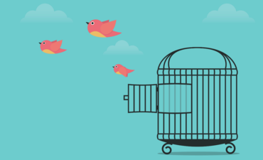 Birds flying from a cage