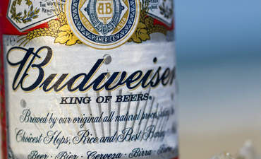 Anheuser-Busch: How we conserve water from 'Seed to Sip' featured image