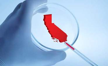 Why California is leading the way on chemical policy reform featured image