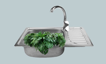 Leaves in a sink