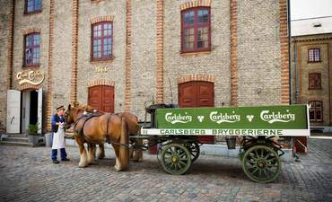 Carlsberg, beer, sustainability