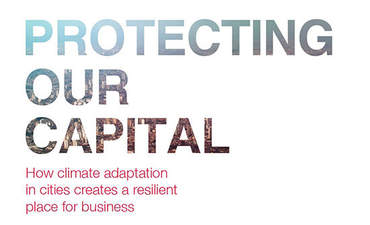 CDP,  C40 report makes the business case for resilient cities featured image
