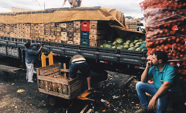 An MBA finds cold comfort in solving a nation's food waste featured image