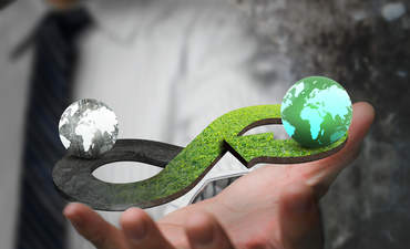 The origins of the circular economy featured image