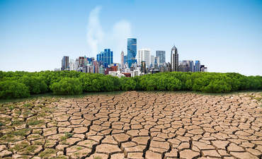 Partnering with cities on climate action plans  featured image