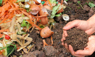 Composting mandates can help prevent food waste.