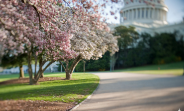 How to support clean energy, cosmetics reform and food labeling featured image