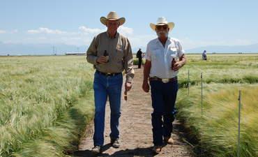 Molson Coors, Bill Markham, barley, farmers, Pete Coors