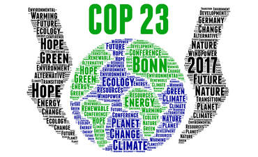 An open letter on COP23 from Walmart and WWF featured image