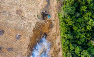 Birds eye view of tropical rainforest deforestation