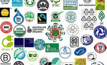Why certification's time has come featured image