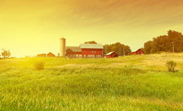 The promise of sustainable agriculture: A report from a townie featured image