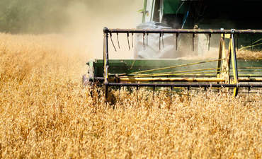Why it's time to fight for stronger farming and carbon policies featured image