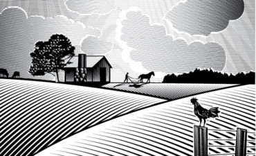 Illustration of a farm