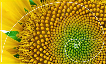 Ellen MacArthur Foundation: 9 ways to design the circular economy featured image