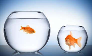 Retail Horizons: Will wealth polarization damage U.S. business? featured image