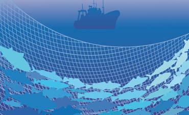 Fishing net illustration