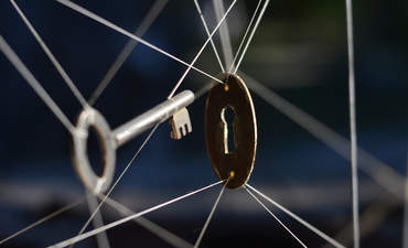 lock and key, constrained innovation