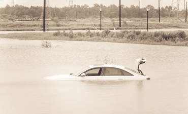 Why do automakers support climate rollbacks? featured image