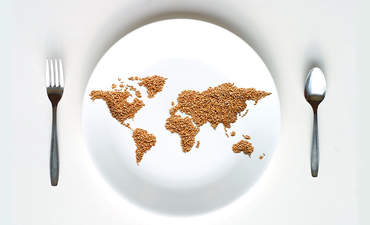 Sustainability on the dietary plate: A huge milestone featured image