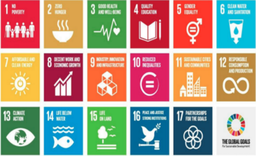 How business can act on the Sustainable Development Goals featured image