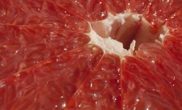 Closeup of grapefruit