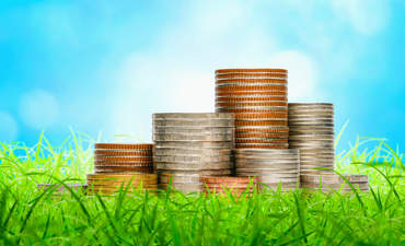 4 sustainable investing myths, debunked featured image