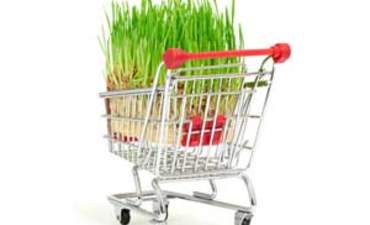 Is sustainability here to stay? What retailers think featured image