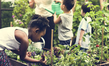How an urban school's gardening project healed a community featured image