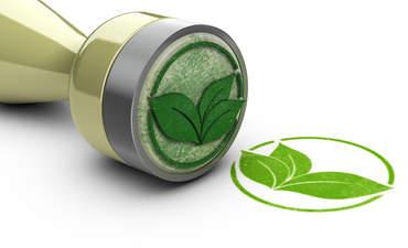 Green leaf stamp illustration