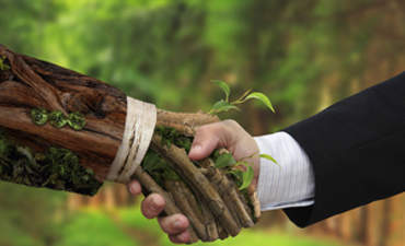 4 Steps to Build Trust into Sustainability featured image