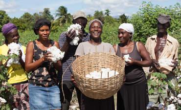 Haiti, cotton, Timberland, smallholder farmer
