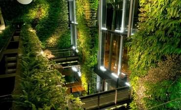 Biomimicry vs. biophilia: A primer featured image