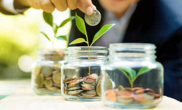 Putting money in jars and growing plants